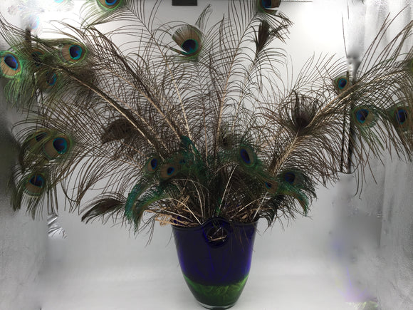 8561 - H - Blue & Green Glass Vase with Rare Color Peacock Feathers (35-40)