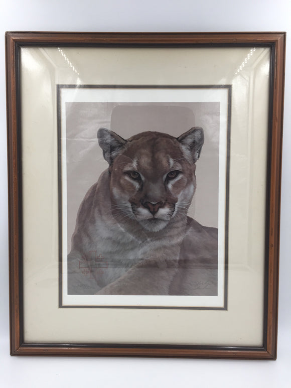 9371 - A - Fine Art - Signed Limited Edition 2692/3000 - Cougar - Peter Skirka - 1984