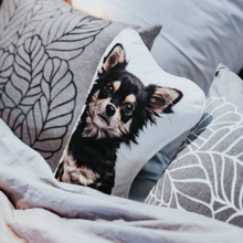 Load image into Gallery viewer, Custom Pet Portrait Pillow