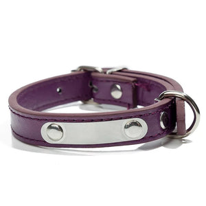 Personalized Engraved Pet Name Leather Collar