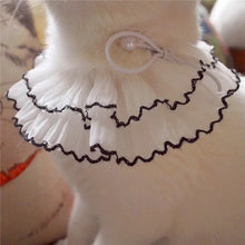 Load image into Gallery viewer, Renaissance black contrast binding Lace Ruffle Pet Neck Collar