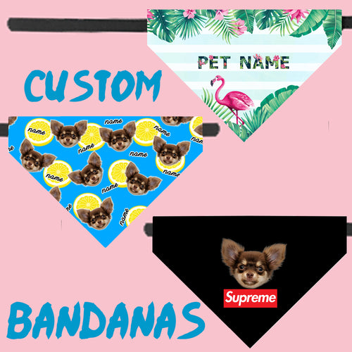 Custom Pet Bandana Collar