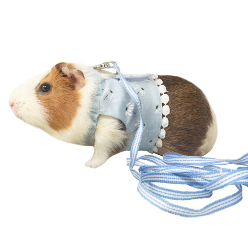 Daisy Vest Harness & Leash Set For Small Pets