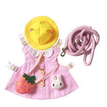 Load image into Gallery viewer, Cute Pink Hat & Dress Leash Harness Set For Small Pets