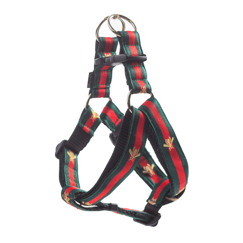 Bee Striped Dog Harness & Leash