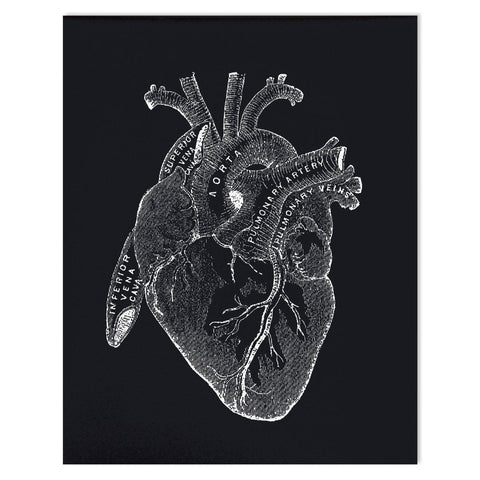 Vintage Heart Diagram Print (8x10)