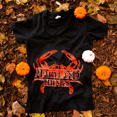 Maryland Things (Black) / Ladies V-Neck Shirt