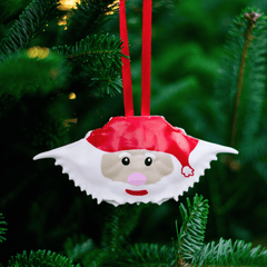 Santa Claws / Crab Shell Ornament