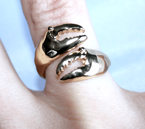 Crab Claw (Matted Rose Gold) / Ring