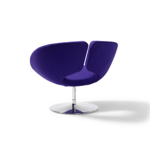 Apollo Lounge Chair