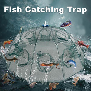 Catching Fish and Shrimp Trap - Digital Market Today-Quality-Innovation-Technology Excellence