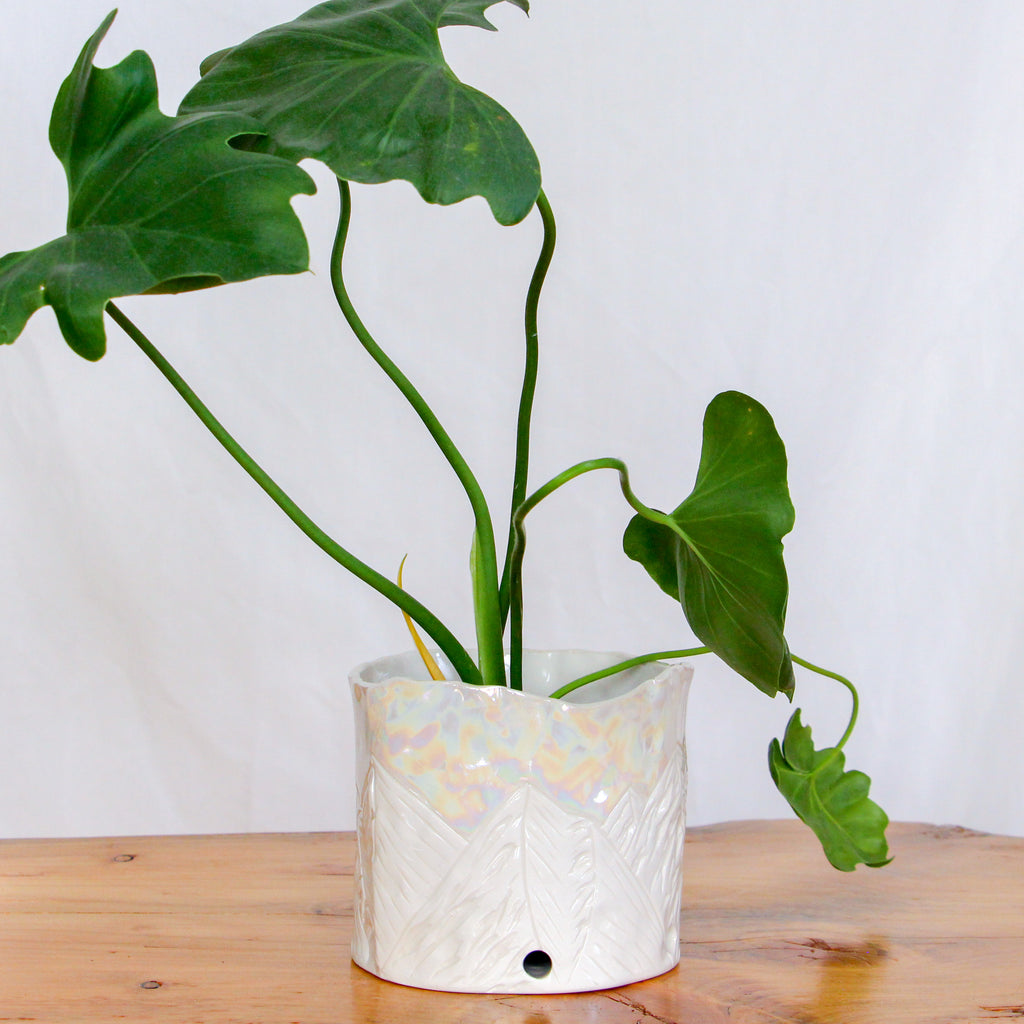 Medium Hand-Built Pearl Mountain Planter