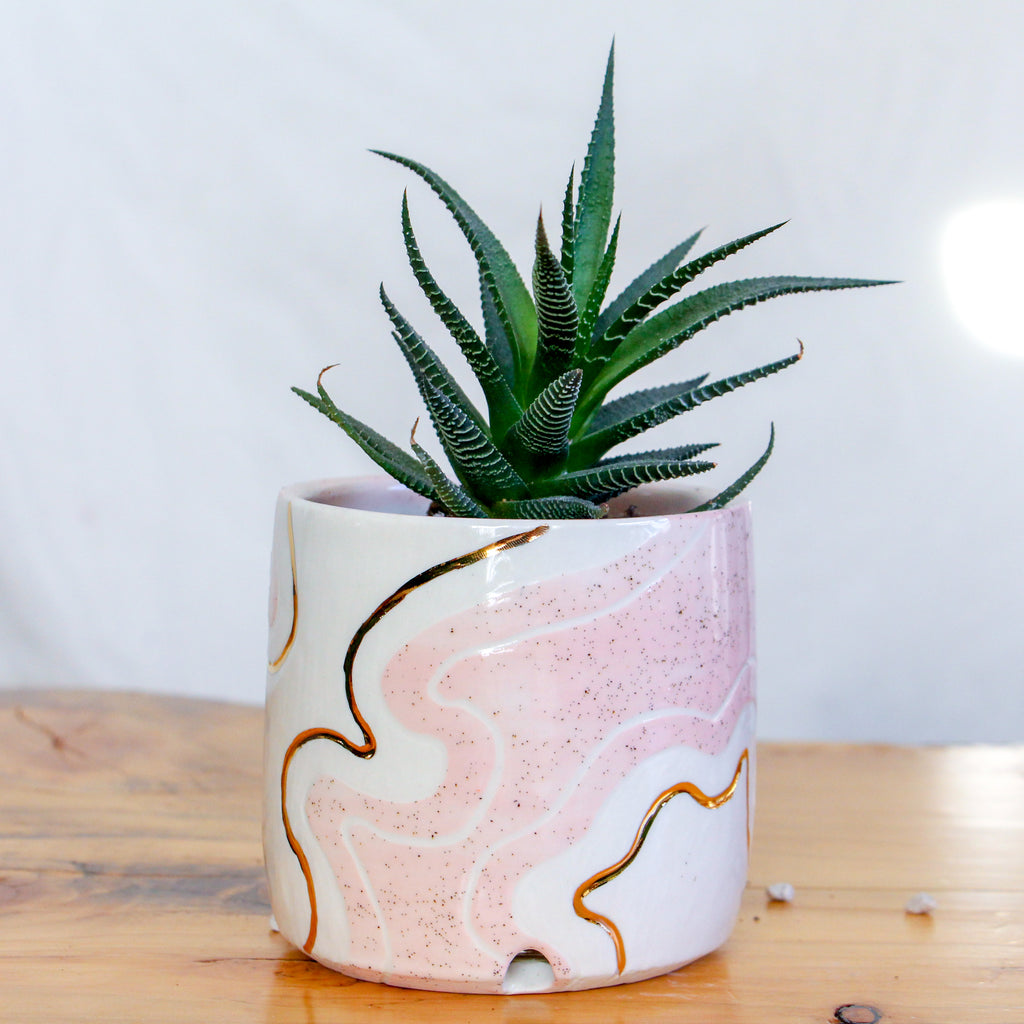 Small Pink Trail Planter