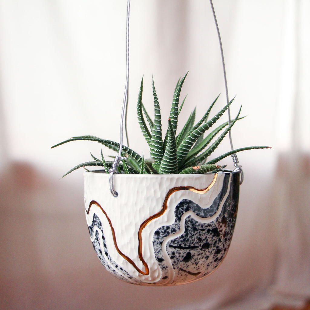 Onyx Fade Trail Hanging Planter #2