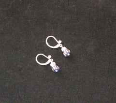 Blue/White Bead Earrings