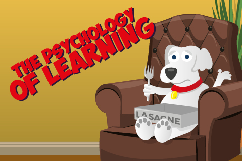 ONLINE COURSE - The Psychology of Learning