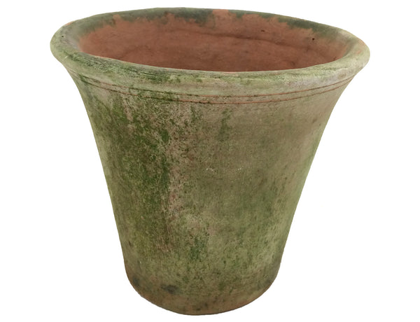 Nursery Planter Short