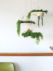 Babylon - Three Light Cluster Plantable Chandelier by Object/Interface lifestyle