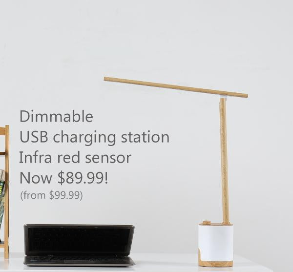 Modern Desk lamp with USB charging port and dimmer