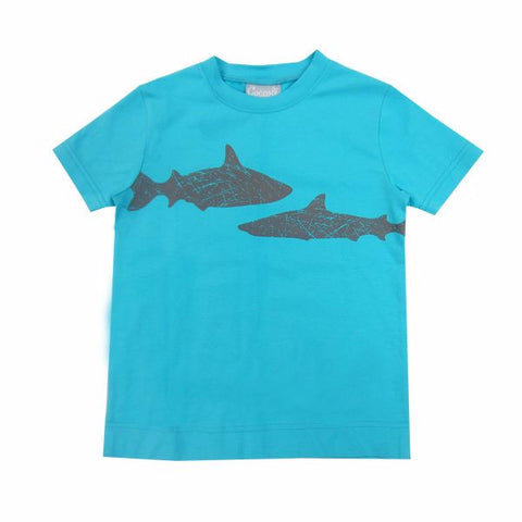 Coccoli Shark T-shirt #74042K (2-10)