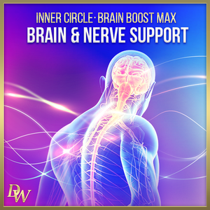 Brain Boost MAX Bundle