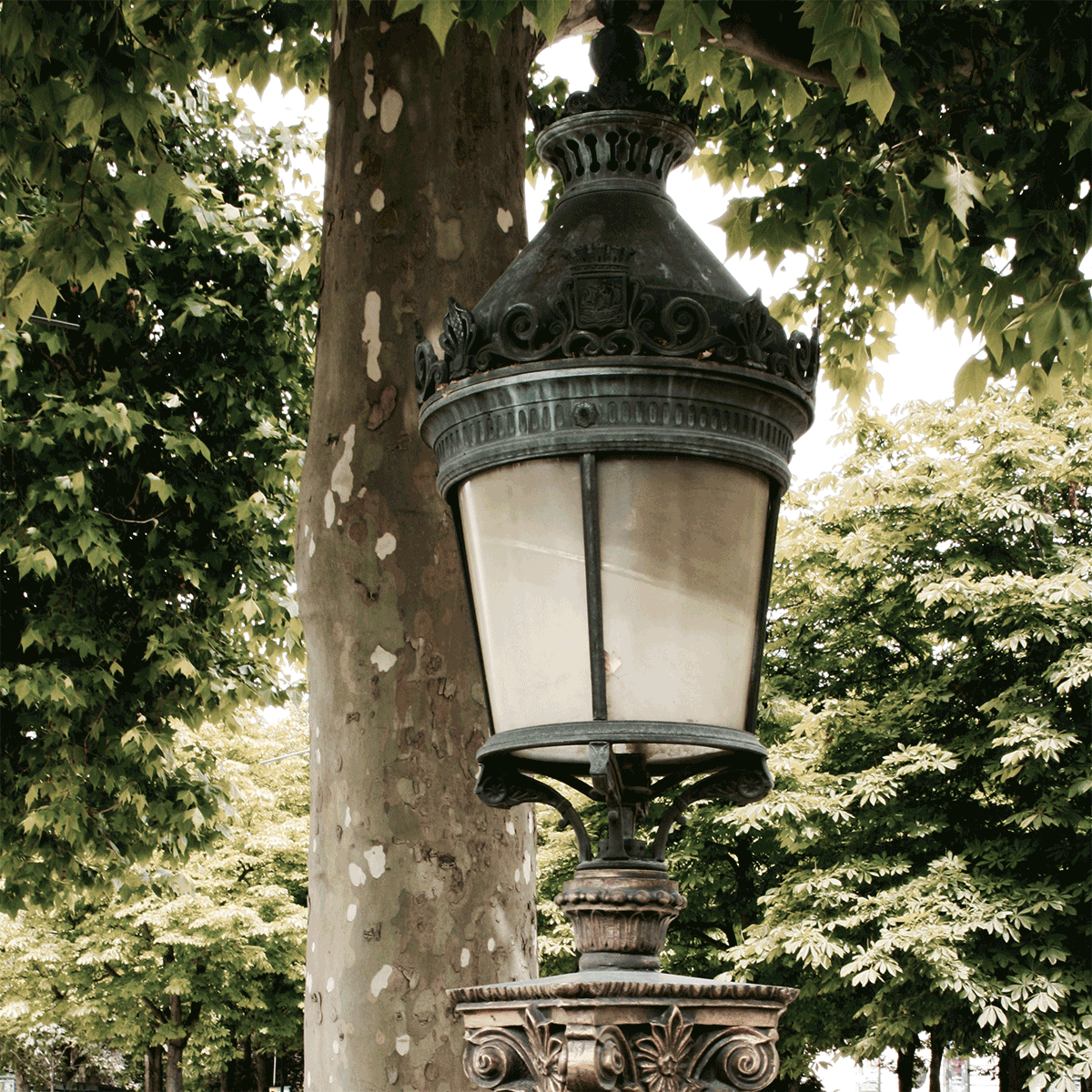 Streetlights, Paris