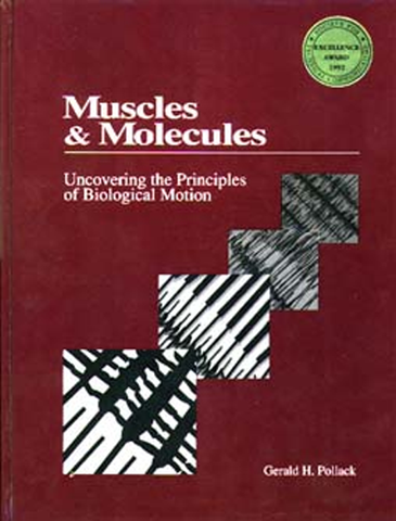 Muscles and Molecules