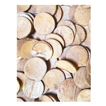 Coconut Shell Rounds, Natural, Pack of 250G