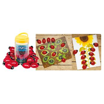 Ladybugs & Activity Cards, Set