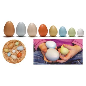 Size Sorting Eggs, Set of 8