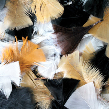 Collage, Feathers, Natural, Pack of 50g