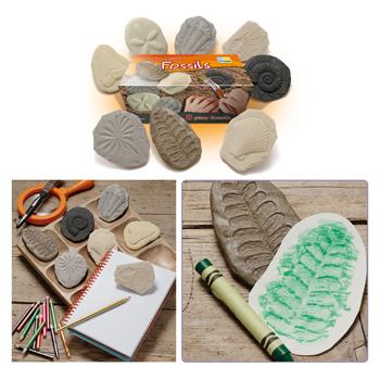Play & Explore Fossils, Set of 8