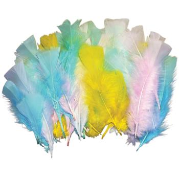 Spring Feathers, Pack of 14G