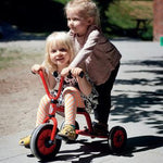 Children's Play Vehicles, Profile, Mini Viking Range, Tricycle, Age 2-4, Each