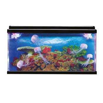 Jelly Fish Tank, Each