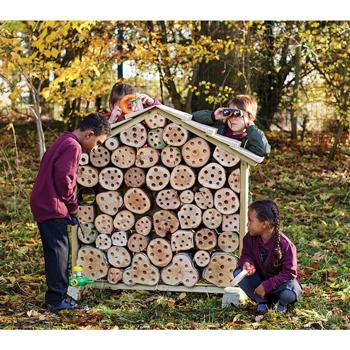 Bug House, Each