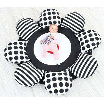 Black & White Range, Contrast Flower Cushion, Each