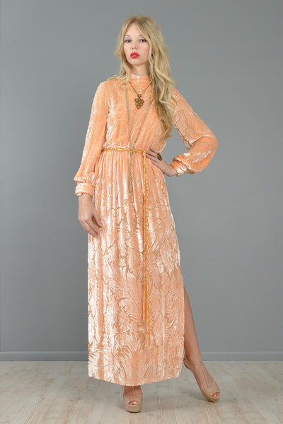 Richilene Blush Devore Silk Velvet Feather Gown