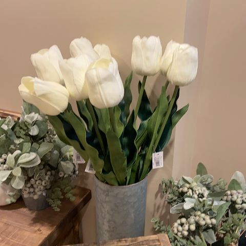 Single White Tulip Stem