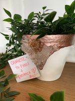 Enchanted Hive - Plant Pots with Crystals