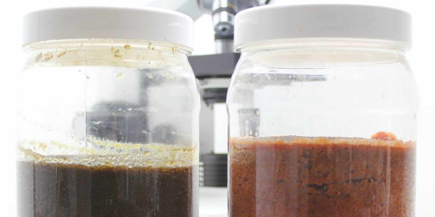 How To: Make your own organic liquid plant food - Fermented Plant