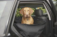 Norton - Back Seat Cover for dogs