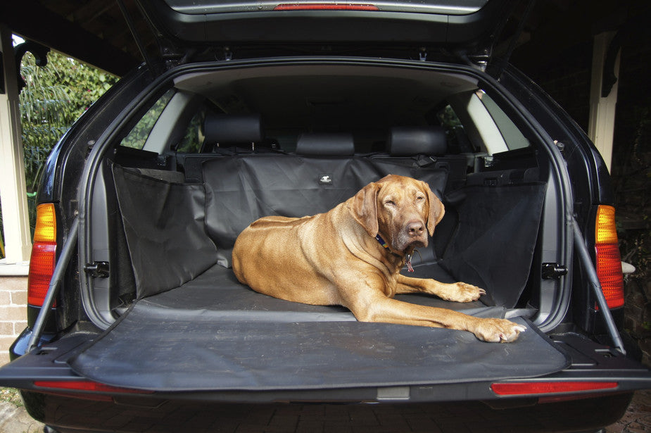 Car boot liner for dogs