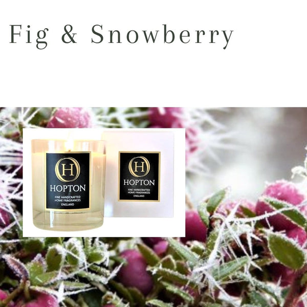 Fig & Snowberry