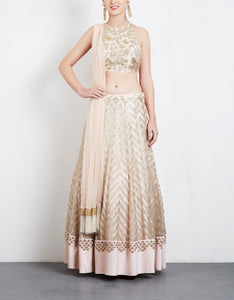 Baby Pink Color Embroidery Work Bridal Lehenga-Bridal Lehenga Store CME023