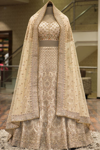 Gold Zardosi Embroidered Tissue Bridal Lehenga-Bridal Lehenga Store