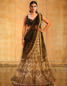 Kalidar Lehenga Saree Crystallized Blouse And Hand Embroidered Dupatta-Bridal Lehenga Store