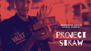 The Vault - Project Straw by Brandon David & Chris Turchi video DOWNLOAD