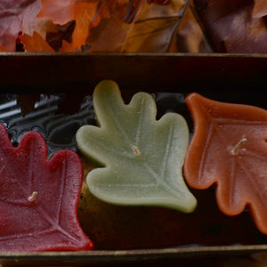 OAK LEAF FLOATING CANDLES 1 DOZEN
