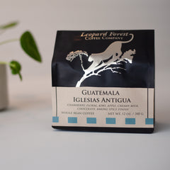 Guatemala Antigua Ilesias (SOLD OUT)